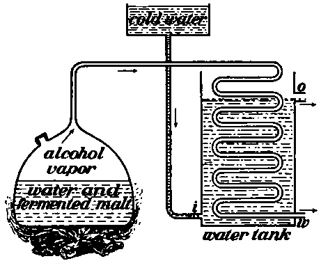 alcohol body diagram  alcohol  free engine image for user